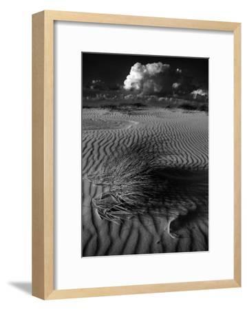 Mimetisme-Pascale De Lattre-Framed Art Print