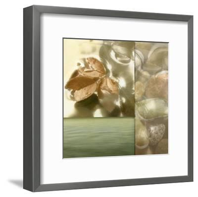 Zen Elements I-Donna Geissler-Framed Art Print