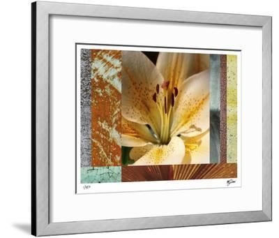 Wildflowers II-Mj Lew-Framed Giclee Print