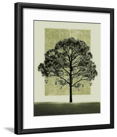 Natures Shapes I-Harold Silverman-Framed Art Print