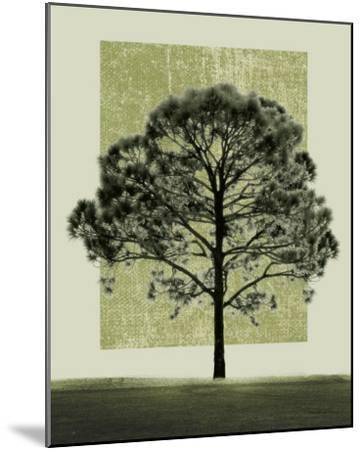 Natures Shapes I-Harold Silverman-Mounted Art Print
