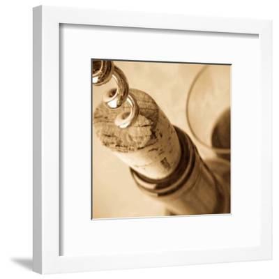 Bouchon II-Jean-Fran?ois Dupuis-Framed Art Print