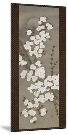 Cherry Blossoms-Yoshida Shuran-Mounted Art Print