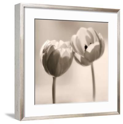 Whispers-Donatella Tandelli-Framed Art Print