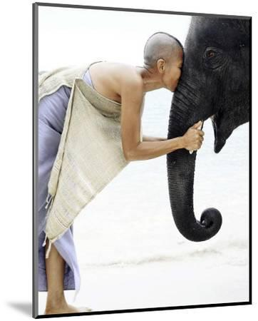 Nose to Nose, Thailand-David Trood-Mounted Art Print