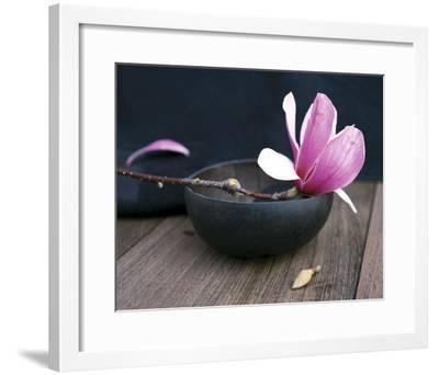 Pink Flower-Amelie Vuillon-Framed Art Print