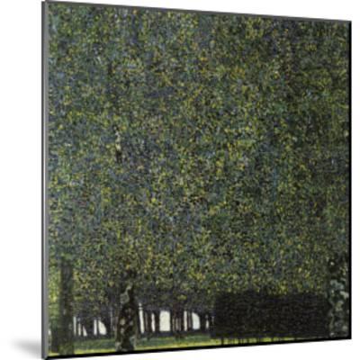 Park-Gustav Klimt-Mounted Giclee Print