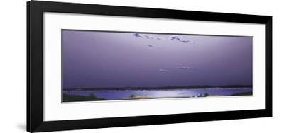 On a Summer's Night, Moonlight Reflections and Others-Guy Paquet-Framed Art Print