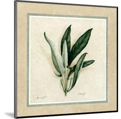 Herbes IV-Vincent Jeannerot-Mounted Art Print