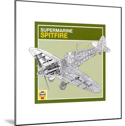 Haynes: Supermarine Spitfire--Mounted Art Print
