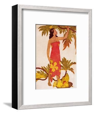 Breadfruit, Royal Hawaiian Hotel Menu Cover c.1950s-John Kelly-Framed Art Print