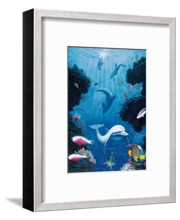 Dolphin Smiles-Andrew Annenberg-Framed Art Print