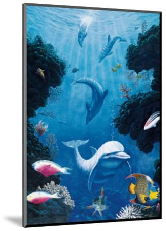 Dolphin Smiles-Andrew Annenberg-Mounted Art Print