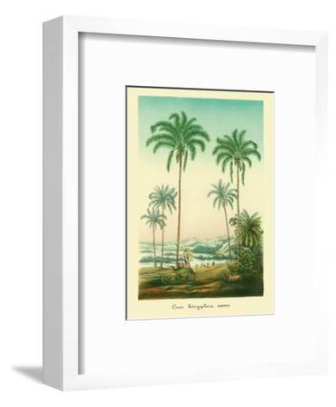 Coconut Palm Trees, 1854-Ch^ Lemaire-Framed Art Print