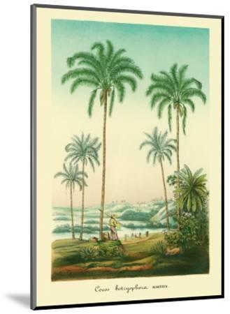 Coconut Palm Trees, 1854-Ch^ Lemaire-Mounted Art Print