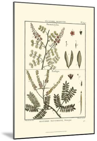 Fern Classification II-Denis Diderot-Mounted Art Print