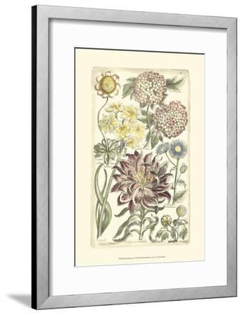 Floral Bounty I--Framed Art Print