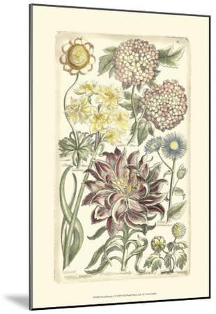 Floral Bounty I--Mounted Art Print