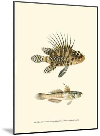 Fish of the Coral Reef VI--Mounted Art Print