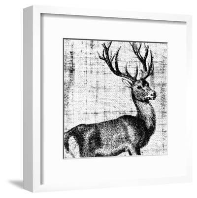 Northwest Territory I--Framed Art Print
