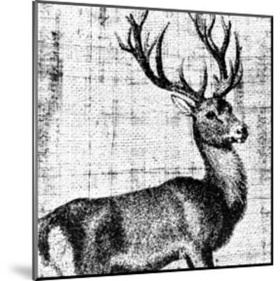 Northwest Territory I--Mounted Art Print