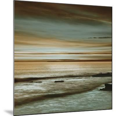 Hightide-John Seba-Mounted Art Print