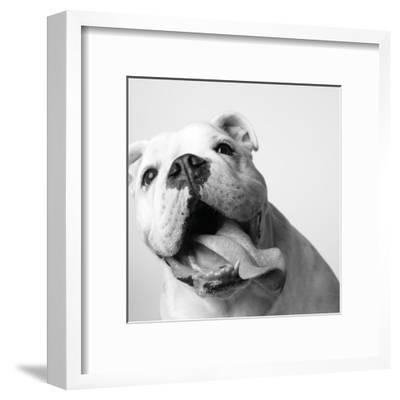 Luca-Amanda Jones-Framed Art Print