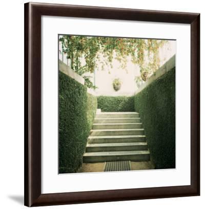 Serres 11, 2008-Alexandre Bibaut-Framed Premium Giclee Print