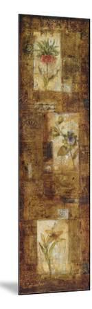 Botanist's Journal II-Francois Fressinier-Mounted Art Print