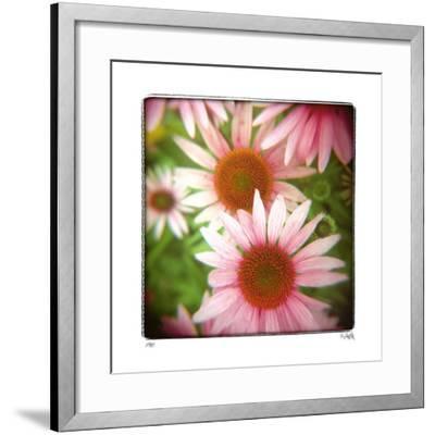 Pink-Rebecca Tolk-Framed Giclee Print