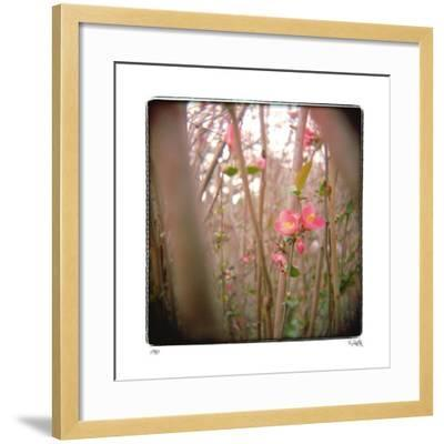 Quince Forest-Rebecca Tolk-Framed Giclee Print