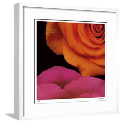 April Roses-Pip Bloomfield-Framed Giclee Print
