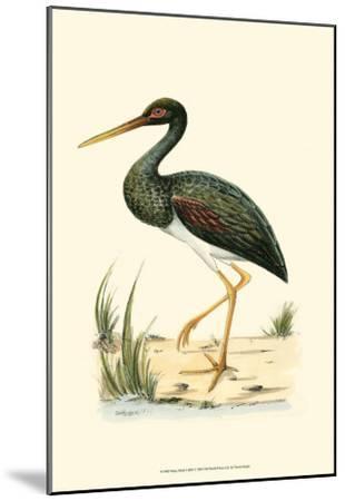 Water Birds I--Mounted Art Print