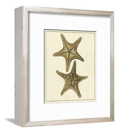 Crackled Antique Shells VIII-Denis Diderot-Framed Art Print