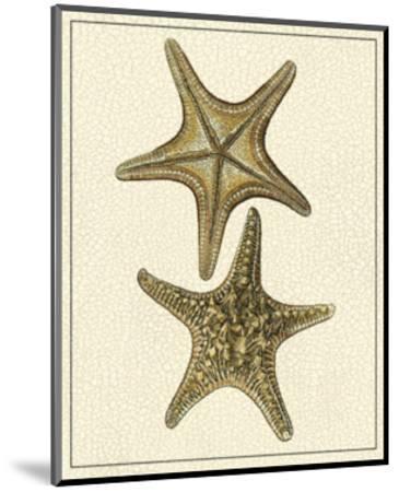 Crackled Antique Shells VIII-Denis Diderot-Mounted Art Print