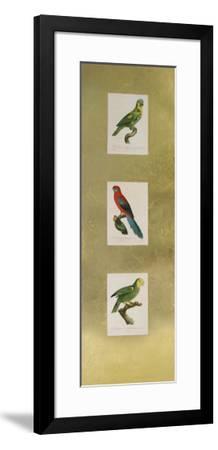 Parrot Panel II-Jacques Barraband-Framed Art Print