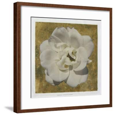 Golden Bloom I-Megan Meagher-Framed Giclee Print