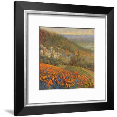 Provencal Village IX-Michael Longo-Framed Art Print