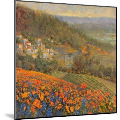 Provencal Village IX-Michael Longo-Mounted Art Print