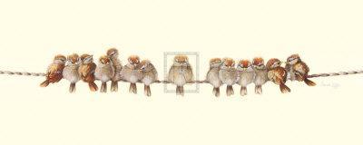 Heads or Tails-Warwick Higgs-Framed Art Print