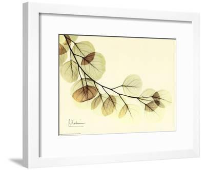 Sage Eucalyptus Leaves II-Albert Koetsier-Framed Art Print