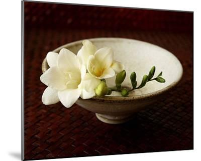 Freesia and Bowl-Florence Rouquette-Mounted Art Print