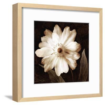 Paisley Blossom II-Keith Mallett-Framed Art Print