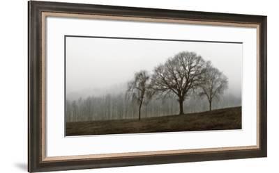 Autumn Fog-Ily Szilagyi-Framed Art Print