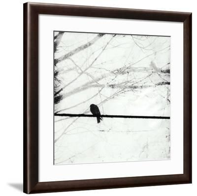 Silver Days II-Ingrid Blixt-Framed Art Print