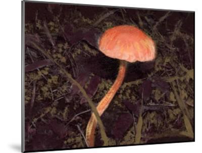 Forest Floor III-Alicia Ludwig-Mounted Art Print