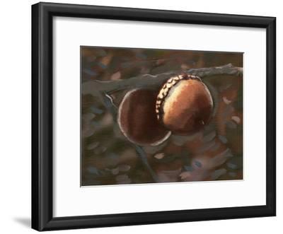 Quercus Palustris I-Alicia Ludwig-Framed Art Print