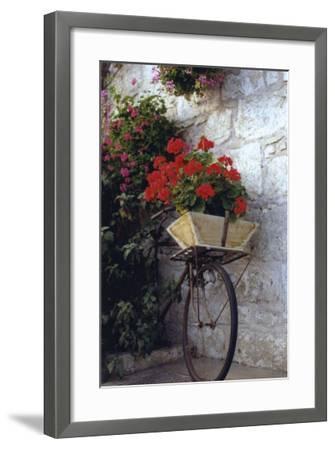 Flower Box Bike-Meg Mccomb-Framed Giclee Print