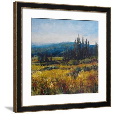 Pacific Northwest I-Tim O'toole-Framed Art Print