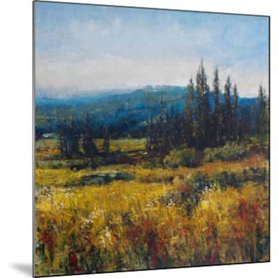 Pacific Northwest I-Tim O'toole-Mounted Art Print